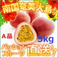 奄美大島パッションフルーツ5kg/A品パッションフルーツ5kg/贈答用(時計草)送料無料
