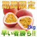 奄美大島訳ありパッションフルーツ2kg/家庭用/ぱっしょんふるーつ/送料無料
