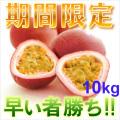 奄美大島訳ありパッションフルーツ10kg/家庭用/ぱっしょんふるーつ/送料無料