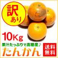 奄美大島たんかん10kg/訳ありタンカン/ご家庭用/送料無料