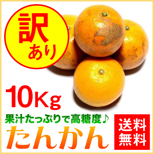 奄美大島たんかん10kg/2L/Lサイズ訳ありタンカン/ご家庭用/送料無料