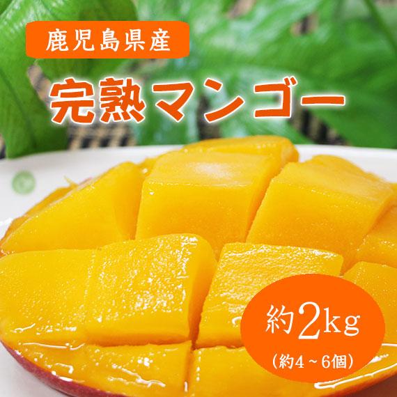南国の恵み完熟マンゴー<ご家庭用>鹿児島県産 約2.0kg(4個~6個入り)送料込み 予約販売 数量限定