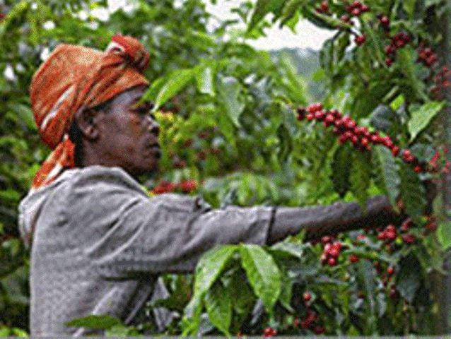 ルワンダコーパック