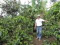 エルプラン豆