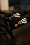GROOVER   「SEDONA」   アセテート眼鏡