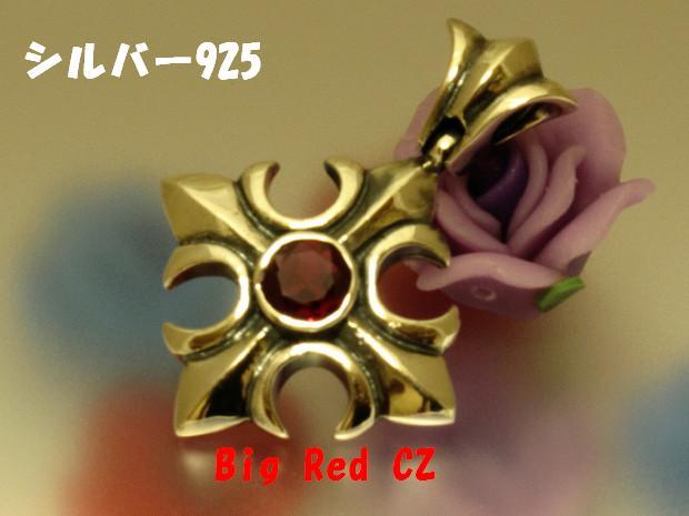 RedczcrossPT01