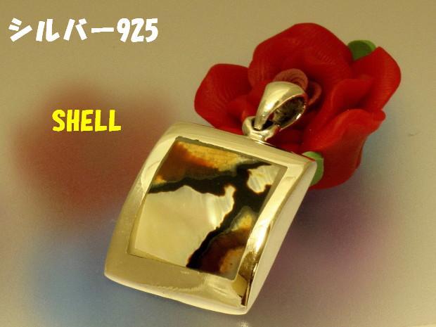 ShellPT01