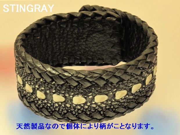 stingrayB01