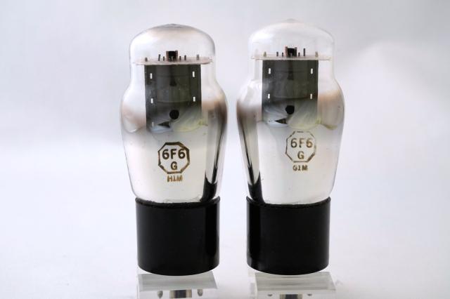 6F6G USA マッチドペア