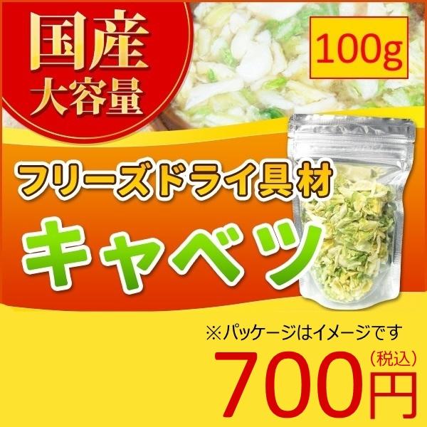 キャベツ フリーズドライ スープ みそ汁 具材 調味料 大袋 100g