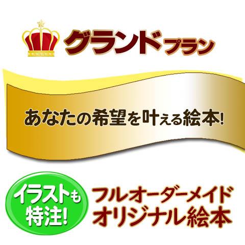 王様プラン〜フルオーダーメイド|世界で1冊の絵本〜データ確認付き【A:絵を描く】