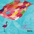Flamenco 〔フラメンコ〕