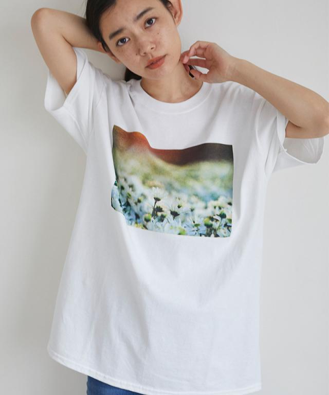 フラワー転写Tシャツ 73-137371*SALE品につき返品/交換/注文確定後の変更キャンセル不可*