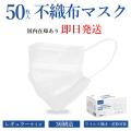 【会員限定販売】マスク 50枚入り 箱あり 大人用 不織布 3層構造 高密度フィルター