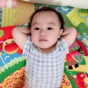 【selva secreta baby】オーガニックコットン生地ギンガムチェックロンパース肌着(blue)