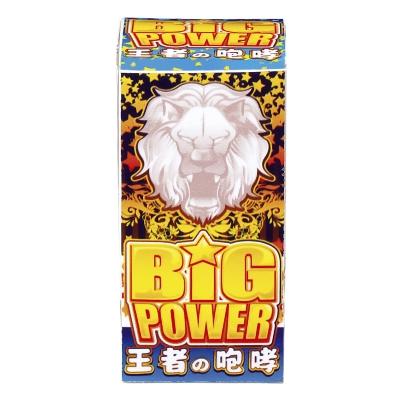 噴出花火 ビッグパワー 【送料サービス対象外商品】