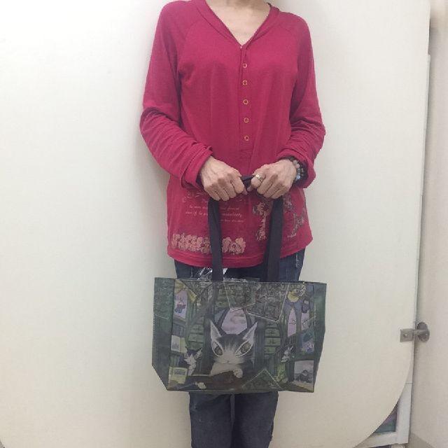 猫のダヤンの横型レッスンバッグ「冒険地図」柄を手に持った画像