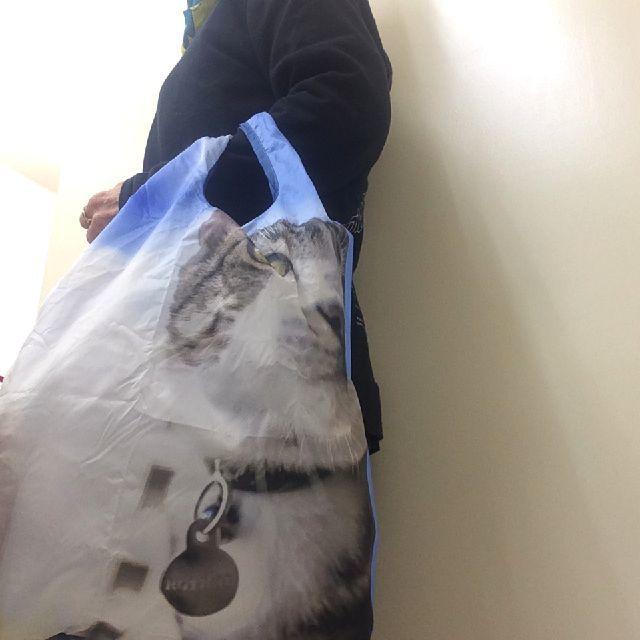 猫の写真のコンパクトルーショッパーを手に下げた画像