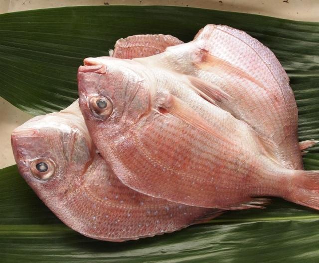 桜鯛(真鯛) 干物