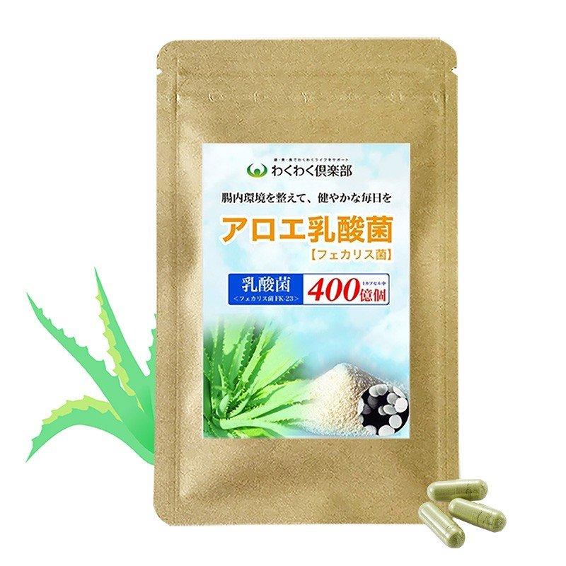 フェリカス菌(乳酸菌)&アロエサプリメント 15日分1袋