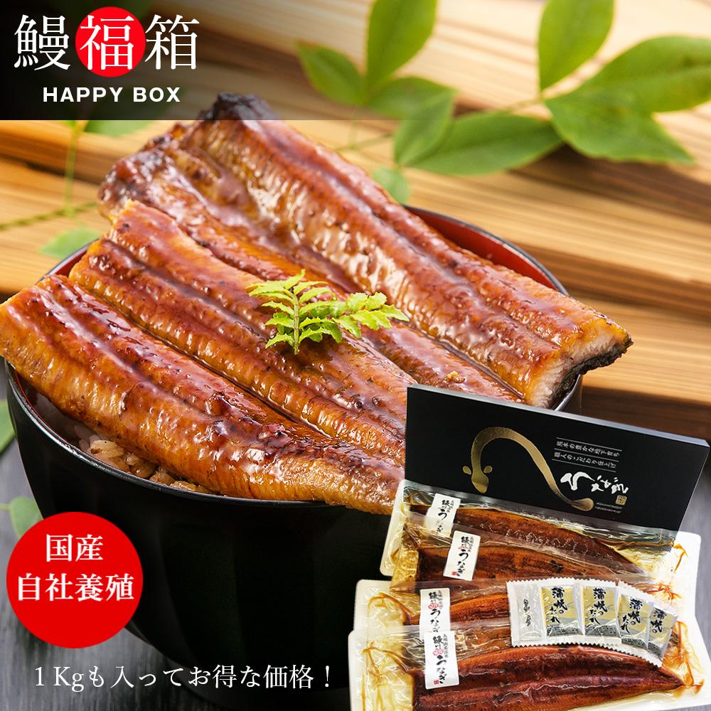 うなぎ 福箱 3~5尾セット(総重量1kg) 【 送料無料 】