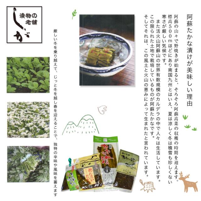 志賀食品の高菜漬け説明