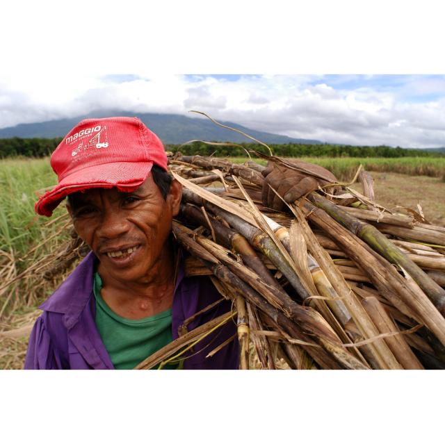 マスコバド糖 黒砂糖 砂糖 ネグロス フィリピン