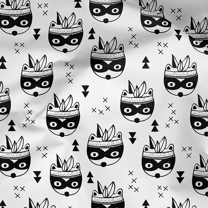 LSS_Indian_Raccoons_BW