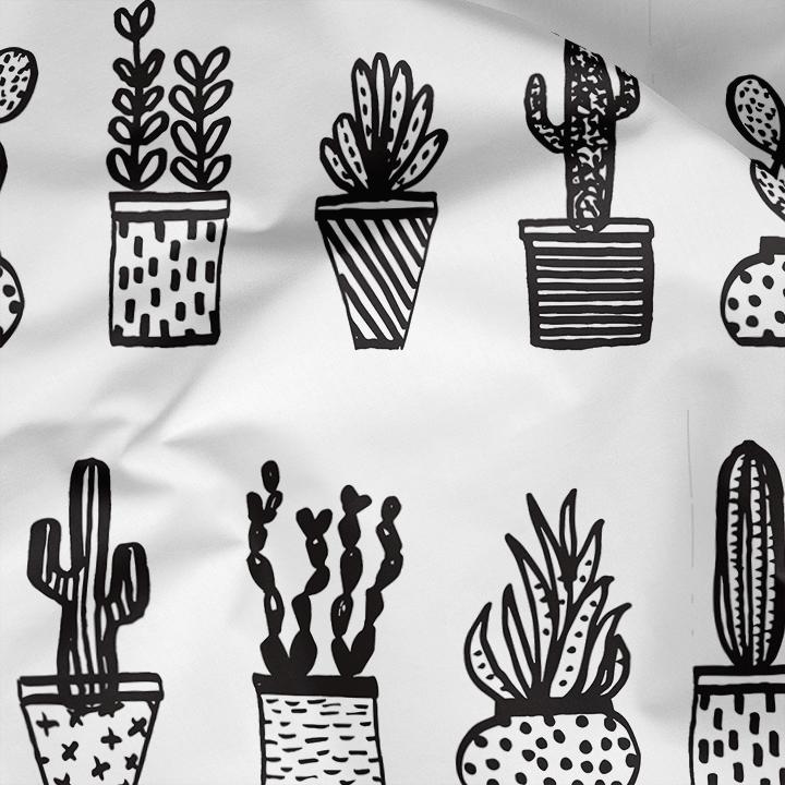 AndreaLauren_Succulents