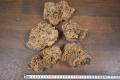 Wood stone(ウッドストーン) MサイズMIX 約2.5kg