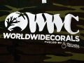 【正規輸入品】WWC T-shirt 迷彩柄系 M size