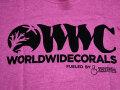 【正規輸入品】WWC T-shirt ピンク系 L size