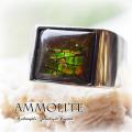 天然石 パワーストーン|アンモナイト アンモライト ドラゴンスキン リング 指輪 シルバー925 アーキエンジェルズ