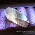天然石 パワーストーン|  ブラジル産スモーキークォーツ 原石