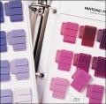 Pantone パントン プラスチックオペーク&トランスペアレントセレクター 補充用セレクターチップ