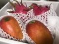 ありがたやファーム完熟マンゴー&ドラゴンフルーツセット