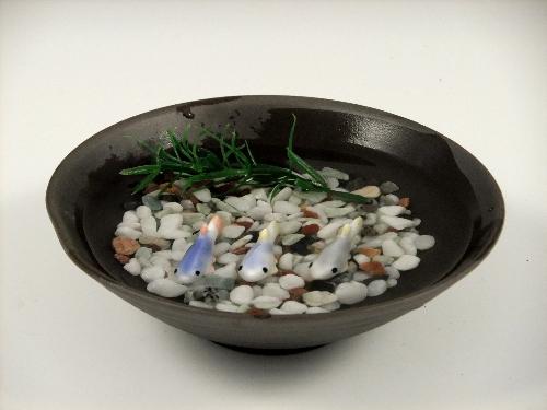 メダカ3・黒陶鉢(小)セット(小石付)