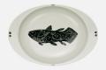 【匠の蔵 極上のカレー皿】 シーラカンス