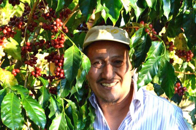 アロテペクエ農園【中煎り】500gまとめ買い15%割引対象パック
