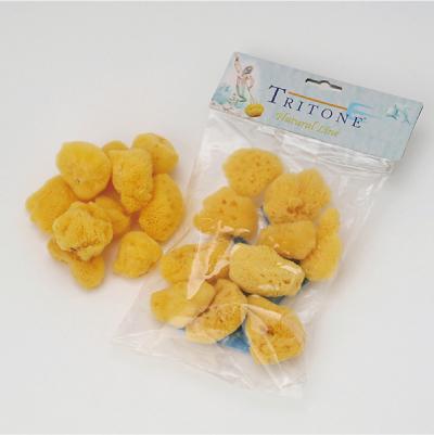 天然海綿シルク種フェイススポンジ 2~3cm 10個入 イタリアベリーニ社製