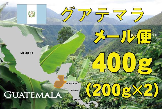 グアテマラ エルパジェ農園  400g 中煎り
