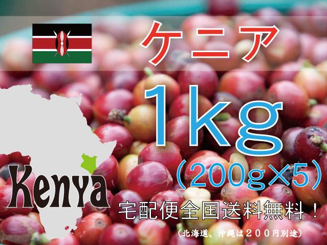 ケニア キウニュウ農協 1kg 中深~深煎り