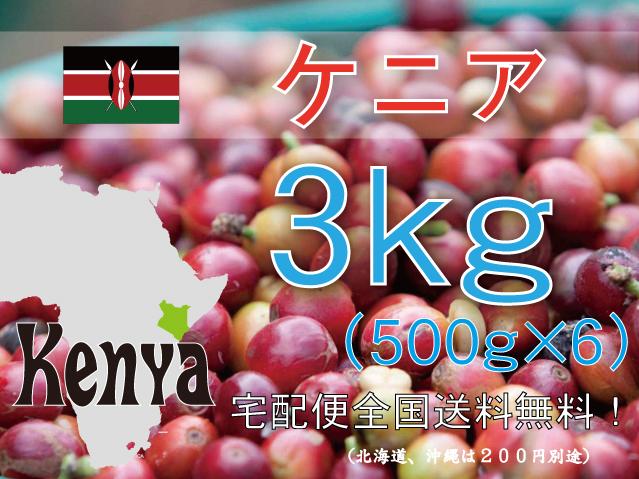 ケニア キウニュウ農協 3kg 中深~深煎り