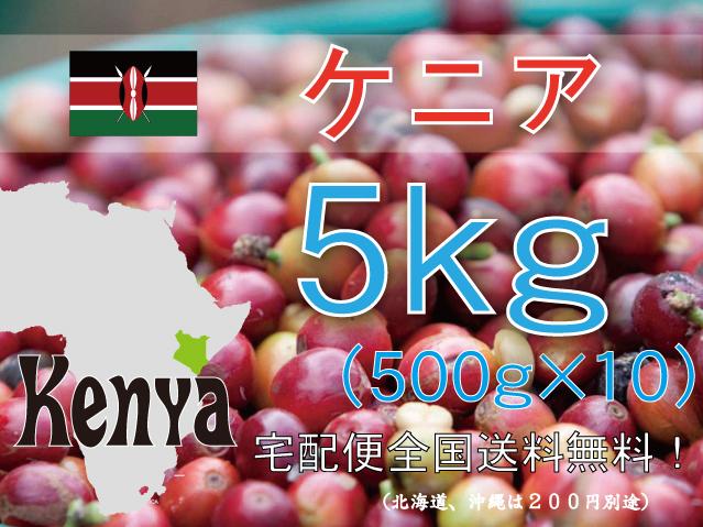 ケニア キウニュウ農協 5kg 中深~深煎り