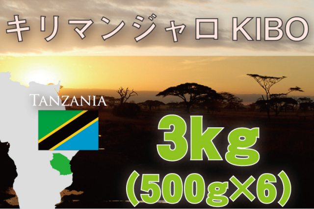 タンザニアAA  3kg 浅~中煎り
