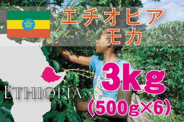 エチオピア モカ 3kg 浅~中煎り