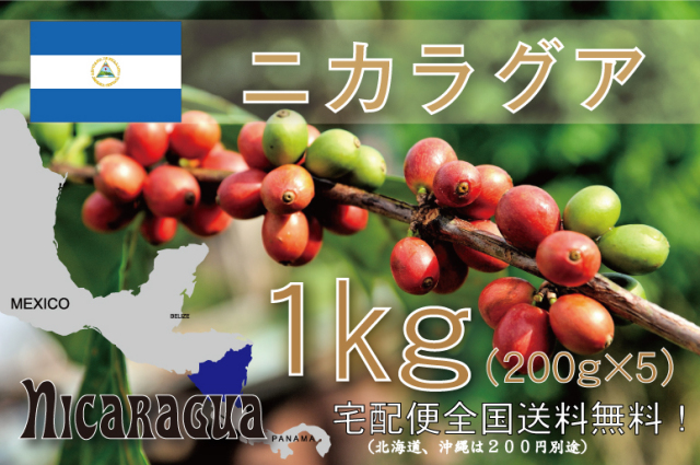 ニカラグア エル・パラシオ 1kg 浅~中煎り