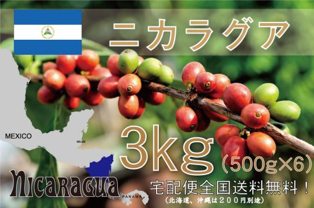 ニカラグア エル・パラシオ 3kg 浅~中煎り