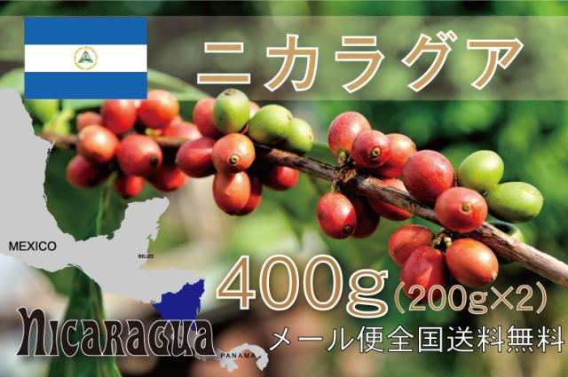ニカラグア エル・パラシオ 400g メール便 浅~中煎り