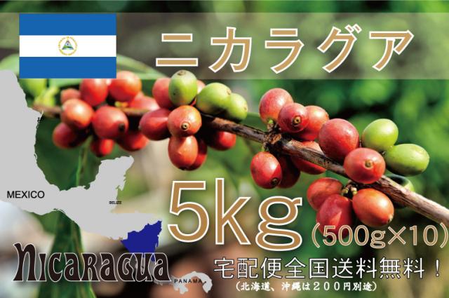 ニカラグア エル・パラシオ 5kg 浅~中煎り